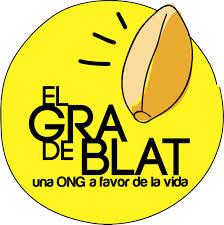 El Gra de Blat ONG, protagonista solidària el 22 de juliol als Mundials de Natació